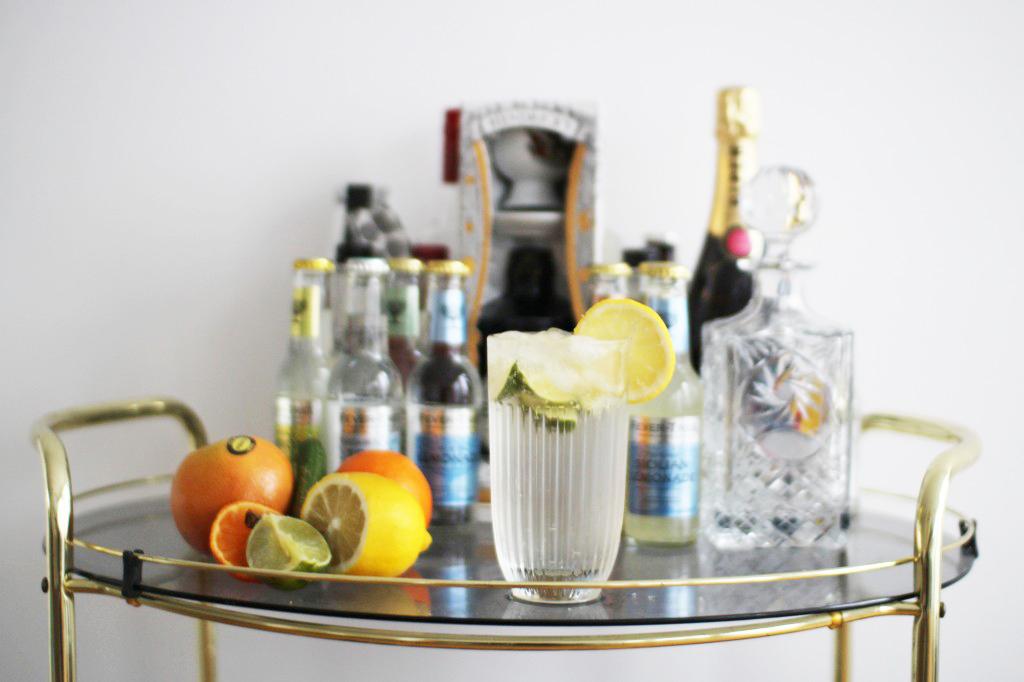 gin-6-1024×682
