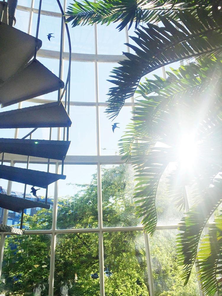 Hortus Botanicus Karvan Cevitam(11)